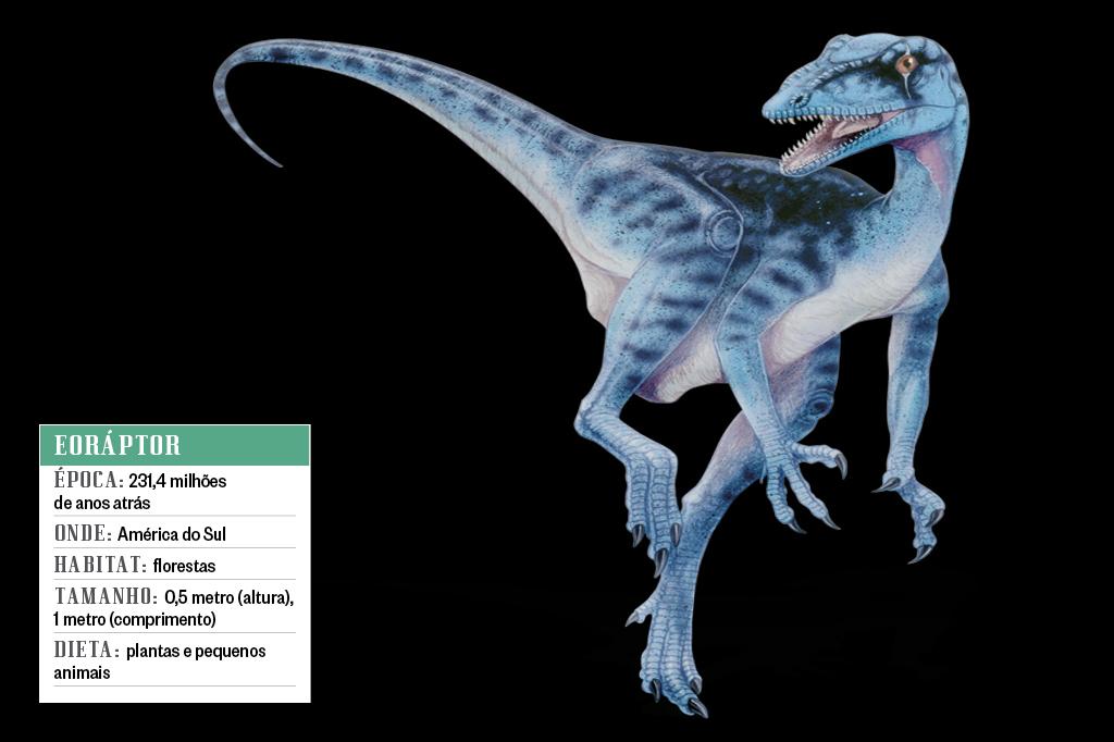 Eoráptor
