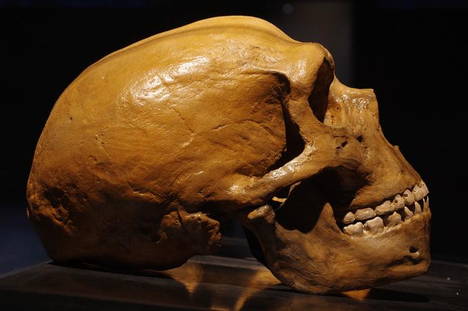 Site_Neandertal