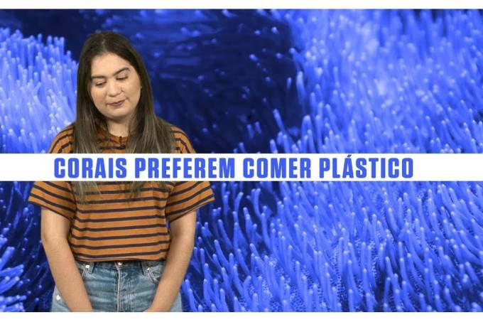 Corais preferem ingerir plástico do que comida habitual – SUPERNOVAS