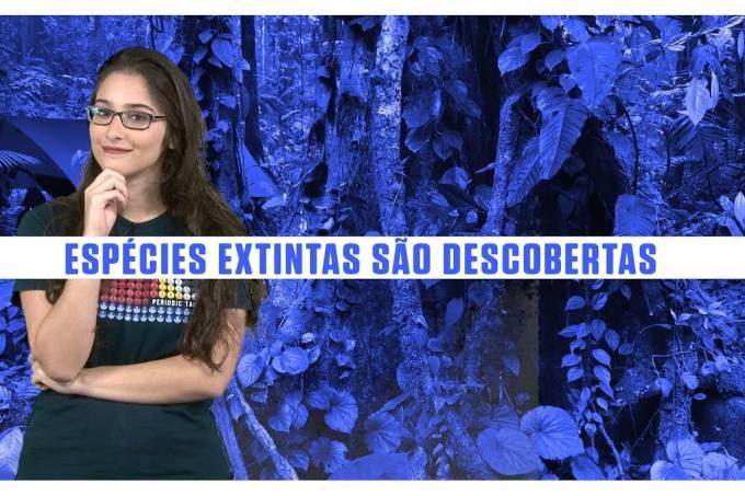"""Espécies extintas são descobertas vivas em expedição até """"cidade perdida"""""""