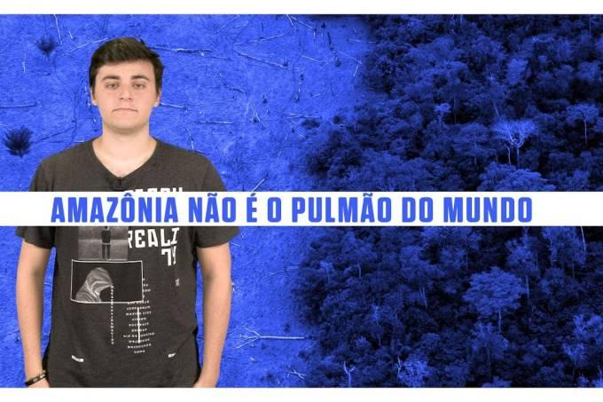 A Amazônia não é o pulmão do mundo