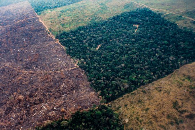 SI_Amazônia