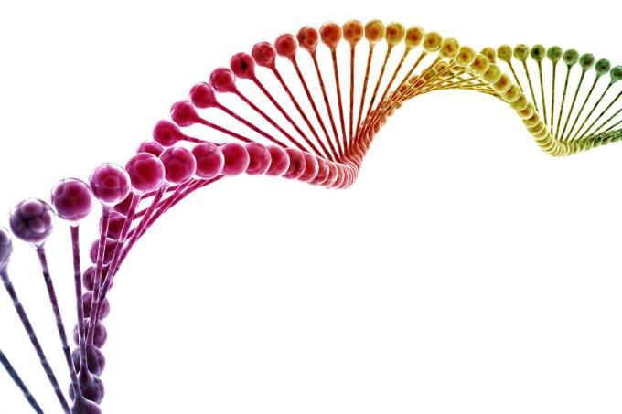 SI_408_Essencial Gene gay