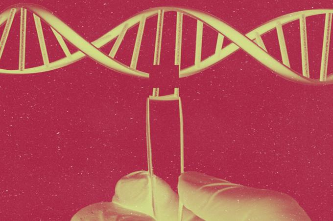 SI_EngenhariaGenética