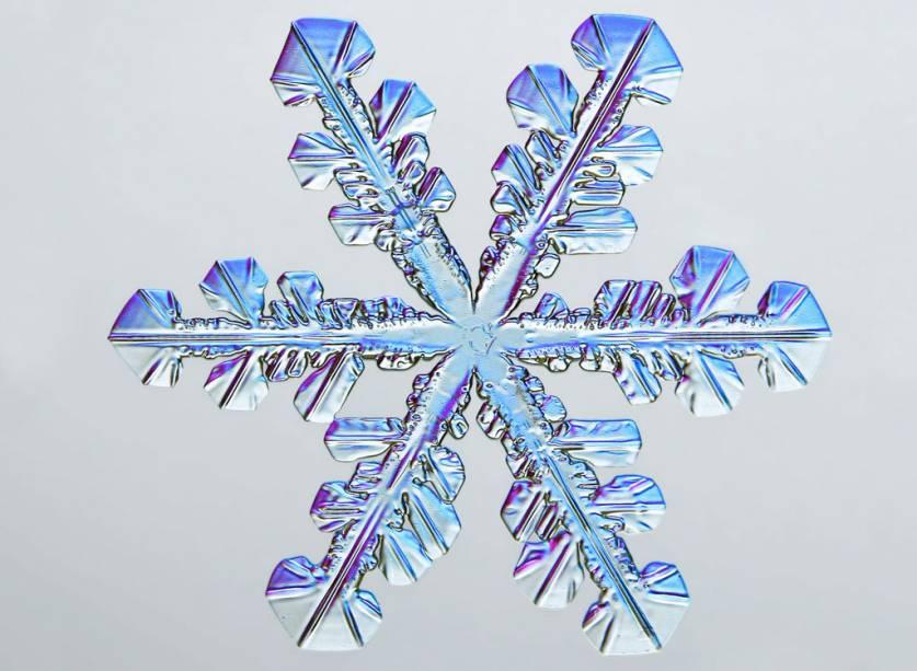 """O quinto colocado retrata a natureza real de um floco de neve: microscopicamente todos remetem a estrelas de seis pontas, por conta da<span style=""""font-weight:400;""""> forma como as moléculas de água se organizam quando congelam.</span>"""