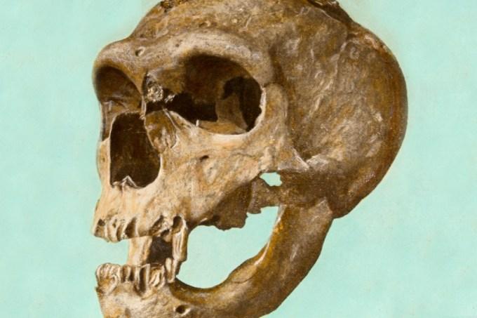 extincao-neandertais