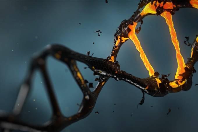 lisichik_pixabay-sequenciar-genoma-brasileiros