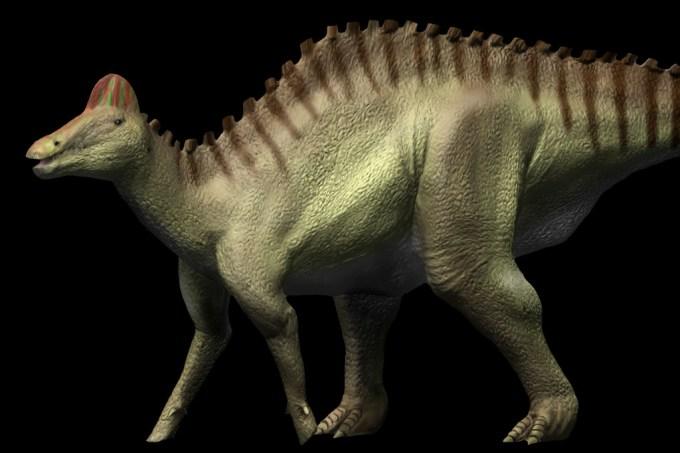 SI_Hypacrossauro