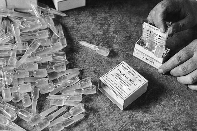 vacina-bcg-site