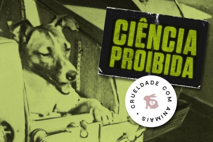 SI_Ciencia_Proibida_Animais_Astronautas