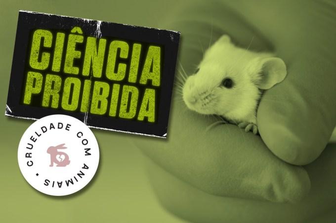 SI_Ciencia_Proibida_animais_testes