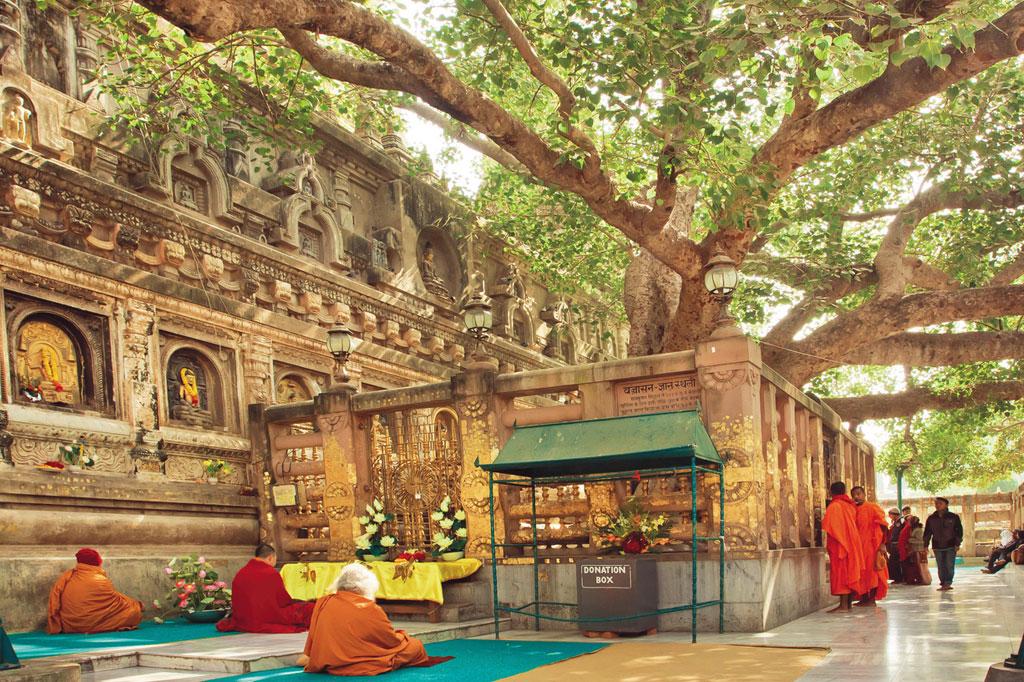<strong>A figueira onde Sidarta Gautama atingiu o estágio superior de consciência passou a ser conhecida como árvore bodhi – ou árvore da iluminação. Uma de suas mudas deu origem à árvore que hoje está plantada em frente ao templo Mahabodhi, na cidade indiana de Bodhigaya – um dos principais pontos de peregrinação dos budistas.</strong>