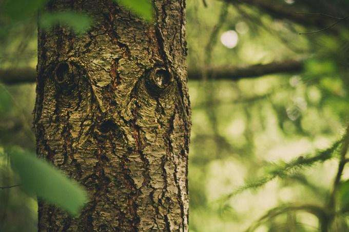 """Pareidolia: por que vemos """"rostos"""" em objetos inanimados? Este estudo explica"""