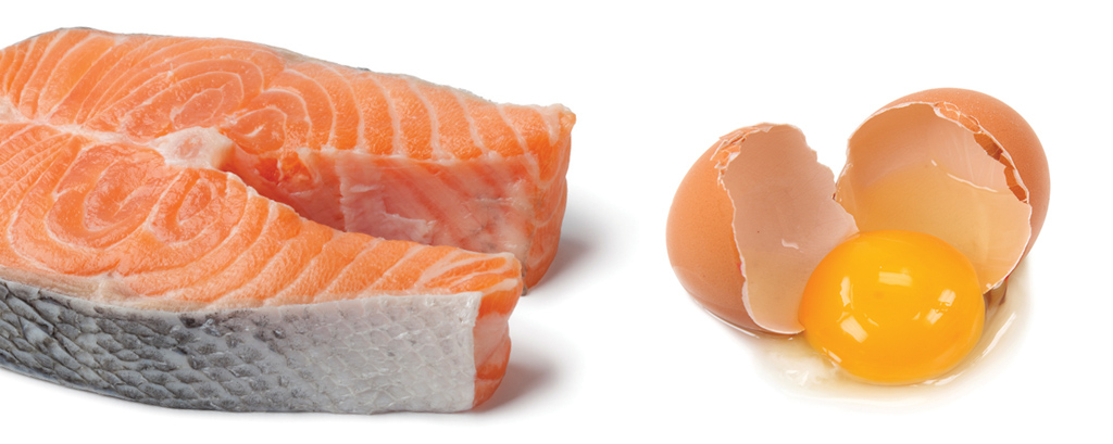 <strong>Peixe, carne orgânica, ovos orgânicos enriquecidos de ômega-3, laticínios: as gorduras boas podem até potencializar os efeitos do tratamento.</strong>