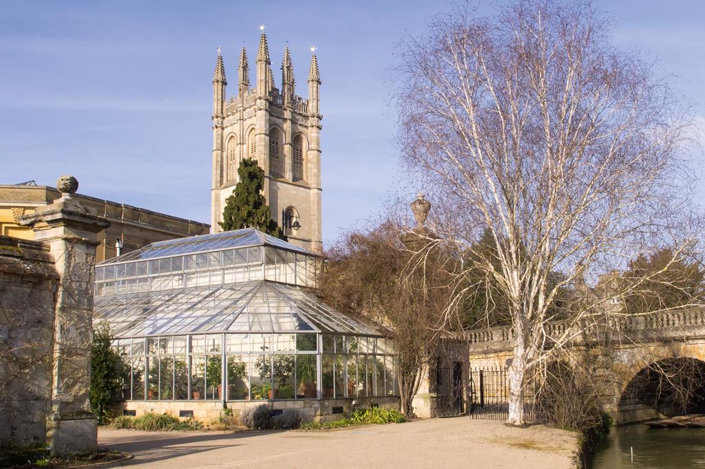 <strong>Além de 283.000 m2 de parques, a área de Oxford inclui os 526.000 m2 do bosque Harcourt Arboretum, que abriga algumas das sequoias mais antigas do Reino Unido.</strong>