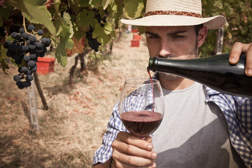 """<strong>A rejeição aos vinhos amadeirados, que às vezes mascaram defeitos, é um traço dos entusiastas da bebida """"sem maquiagem"""".</strong>"""