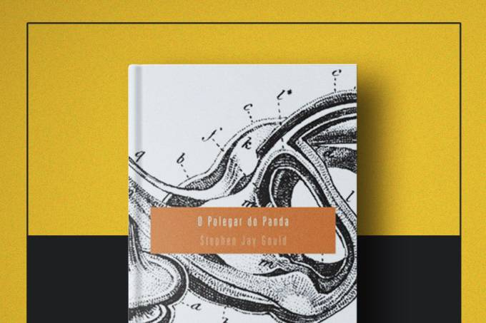 """Livro da semana: """"O Polegar do Panda"""", de Stephen Jay Gould"""