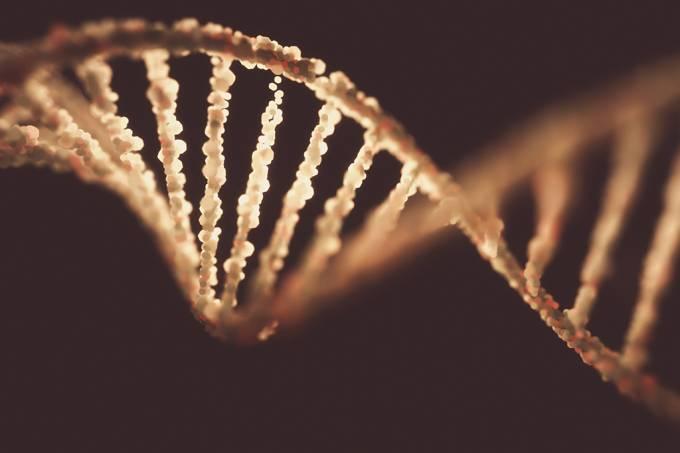 Brasil realiza maior sequenciamento genético de idosos na América Latina