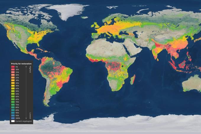 Restaurar 30% das áreas degradadas do planeta pode salvar 71% das espécies ameaçadas