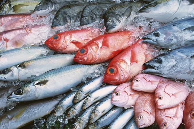 Mutação genética faz com que algumas pessoas não sintam o cheiro de peixe