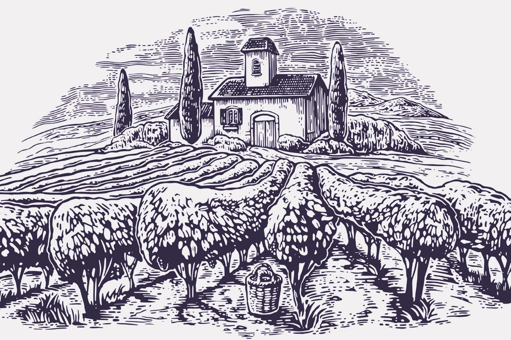 <strong>Agricultura: a descoberta mais transformadora da história da nossa espécie.</strong>
