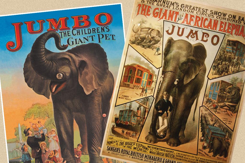 <strong>O apelido dos aviões gigantes é uma referência ao maior elefante já colocado em cativeiro. Nascido no Sudão, em 1859, Jumbo pertencia ao zoológico de Londres. O grandalhão era muito dócil e chegava a carregar 100 crianças nas costas. Foi vendido para o circo americano Barnum & Bailey em 1882 e morreu três anos depois, atropelado por uma locomotiva. Reza a lenda que o Jumbo de quatro patas se sacrificou para salvar um elefante bebê. A palavra vem do termo jumbe, que significa chefe no idioma suaíli. </strong>