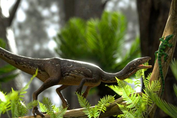 Brasileiros reconstroem cérebro de dinossauro que viveu há 233 milhões de anos