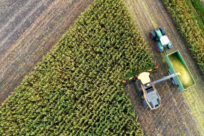 1% das fazendas operam 70% das terras agrícolas do mundo