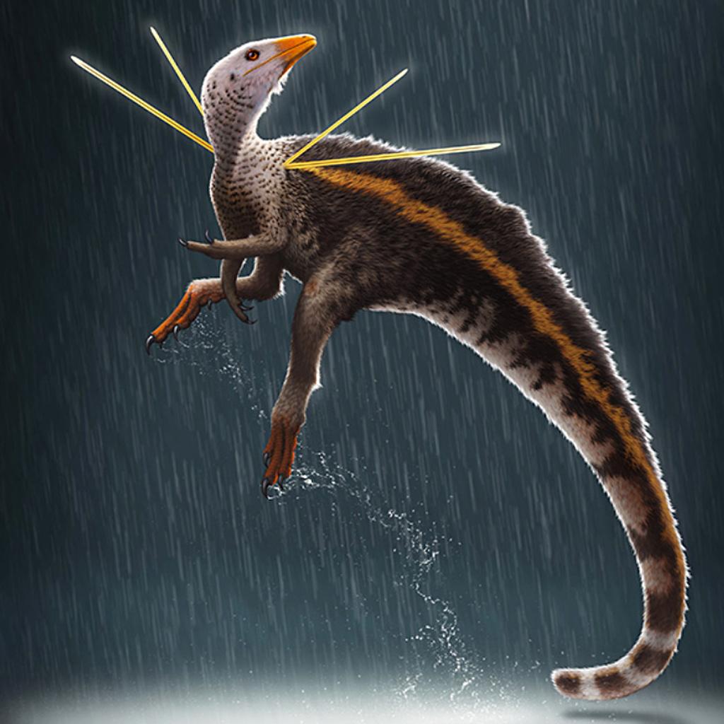 Ilustração do dinossauro Ubirajara jubatus, dino brasileiro.