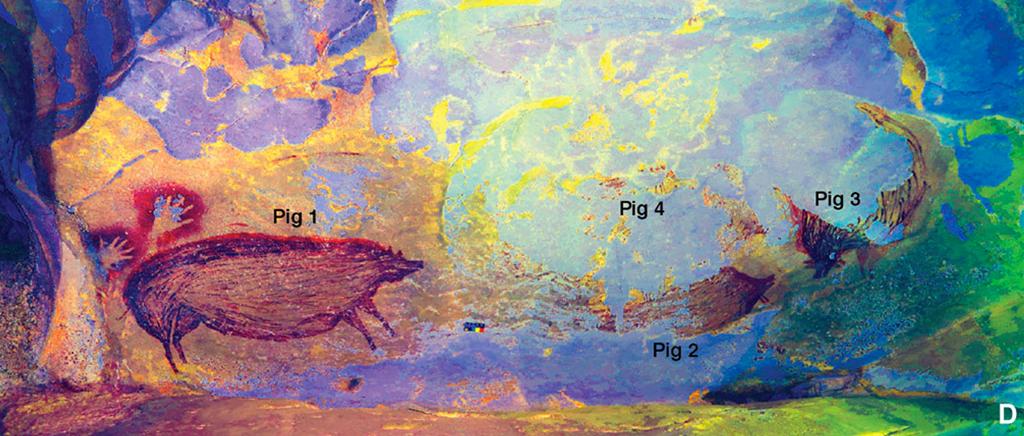Imagens de porcos pintados na parede de uma caverna.