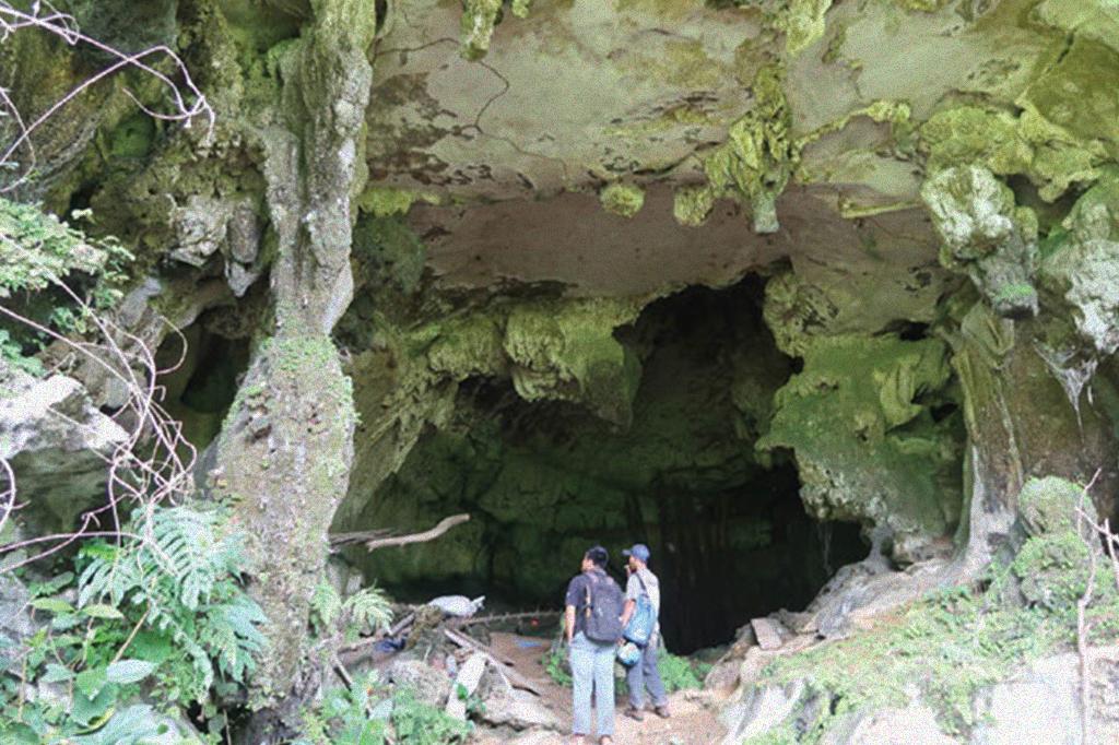 Entrada da caverna Leang Tedongnge.