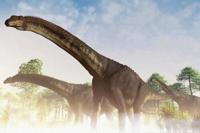 Dinossauro encontrado na Argentina pode ser maior animal terrestre de todos os tempos