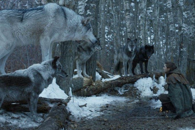 Os lobos pré-históricos (aqueles de Game of Thrones) eram bem diferentes dos lobos atuais