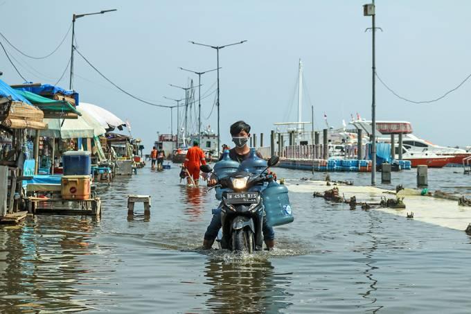 8% da superfície terrestre pode afundar até 2040, sugere estudo