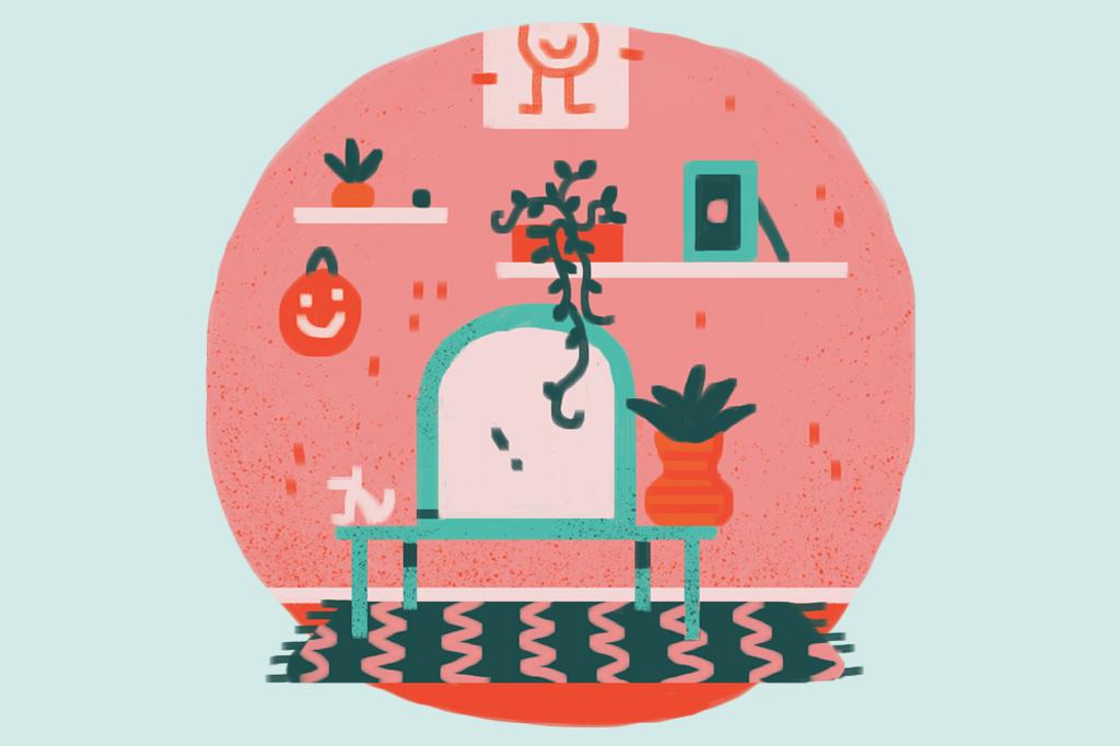Como decorar a casa por conta própria? Plantas ficam bonitas penduradas na parede ou no teto – o que libera espaço no chão.