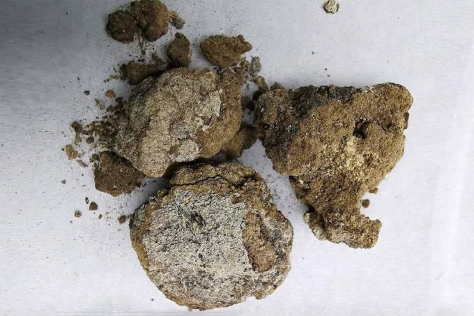 """Creme facial de 2,7 mil anos foi feito de gordura animal e """"leite"""" de caverna"""