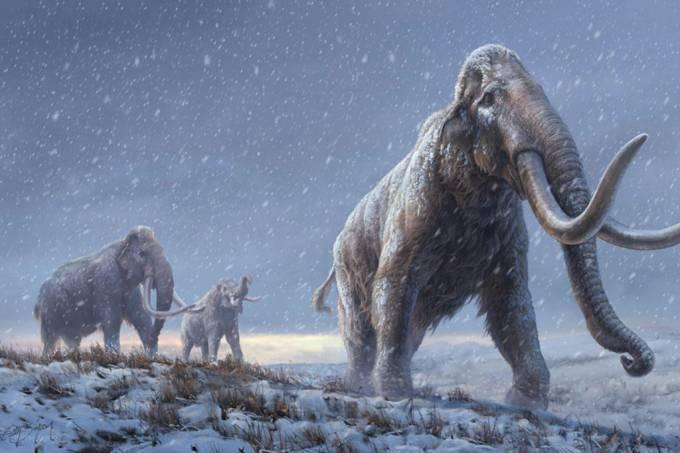 Cientistas sequenciam genoma de mamutes com 1 milhão de anos (recorde de + antigo)