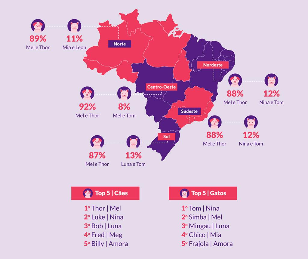 Gráfico do mapa do Brasil, apontando os nomes de cachorros e gatos mais comuns em cada região do país.