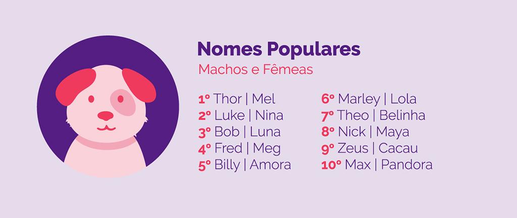 Ilustração de um cachorro ao lado dos 20 nomes mais populares no Brasil.
