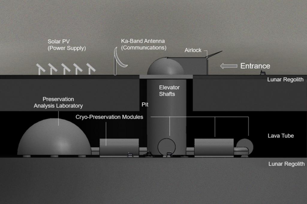 Ilustração esquematizando o projeto.