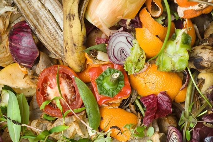 Um sexto de toda comida produzida vai para o lixo, diz relatório
