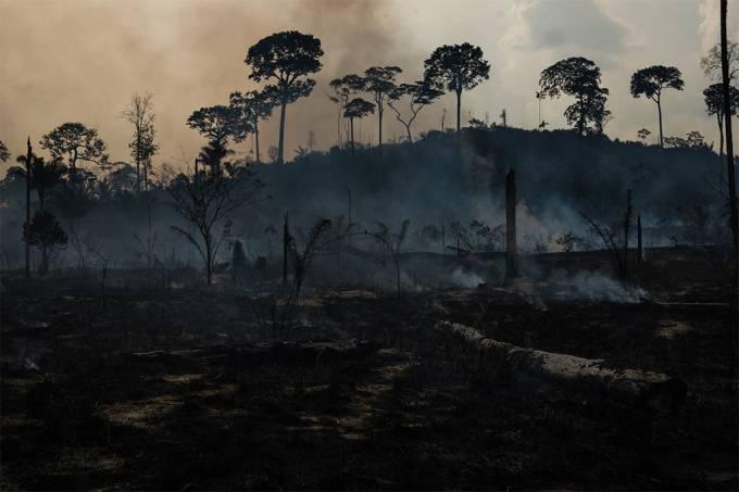 Floresta Amazônica está emitindo mais gases do efeito estufa do que absorvendo