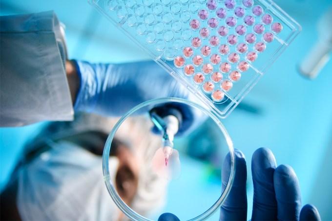 87% dos projetos de pesquisa aprovados pelo CNPq vão ficar sem bolsa em 2021