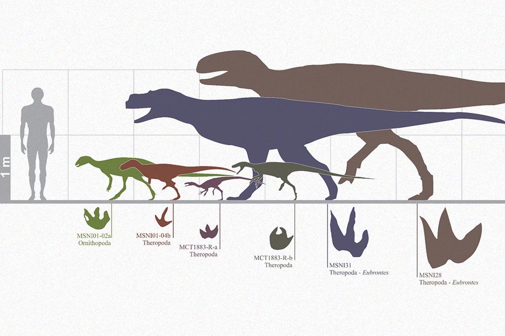 Imagem comparando as pegadas de dinossauros diferentes.