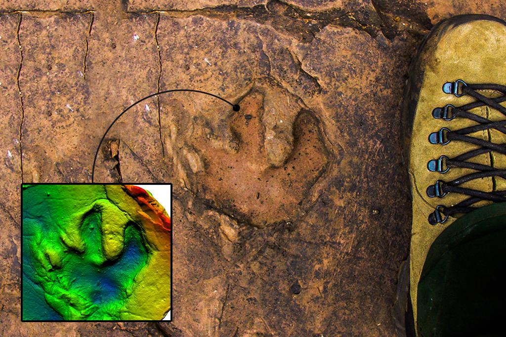 Imagem mostrando a pegada de dinossauro.