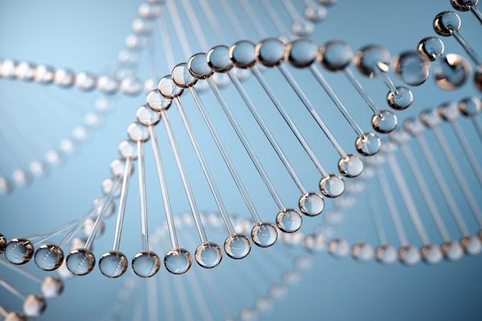 Pessoas que vivem mais de 105 anos podem ter genes que reparam o DNA
