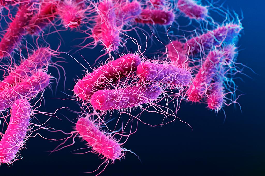 Ela é uma versão alterada da E. coli, que vive no intestino humano. Transforma Co2, vilão do aquecimento global, em combustível.