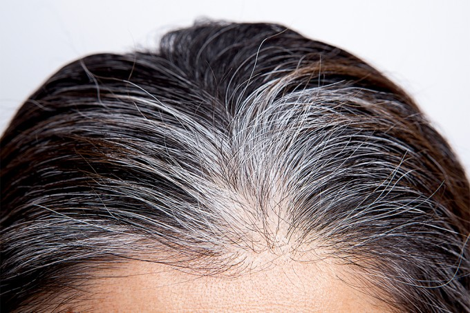 Cabelos grisalhos podem voltar à cor original — e isso está relacionado ao estresse
