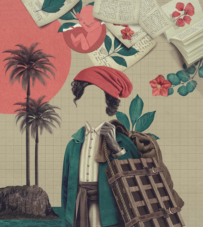 Colagem com a Jeanne Baret, sem rosto, no centro da imagem, carregando um saco e uma prensa de madeira. Ao fundo e ao redor dela, árvores tropicais, um caderno com as folhas voando e com a planta que recebeu o nome dela por um tempo. Também há a ilustração de um feto.