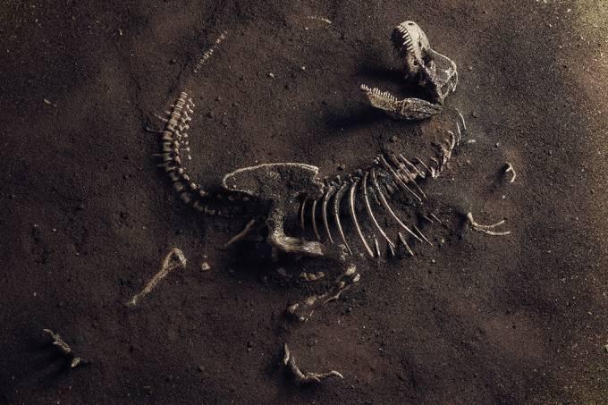 Dinossauros estavam em declínio antes da extinção, estudo sugere